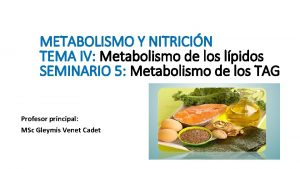 METABOLISMO Y NITRICIN TEMA IV Metabolismo de los