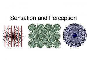 Sensation and Perception Chapter 6 Sensation vs Perception