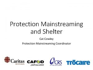 Protection Mainstreaming and Shelter Cat Cowley Protection Mainstreaming