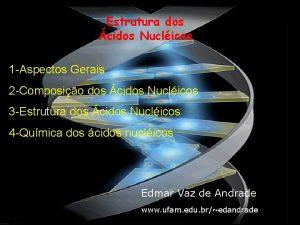 Estrutura dos cidos Nuclicos 1 Aspectos Gerais 2