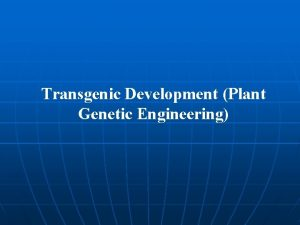 Transgenic Development Plant Genetic Engineering Genetic Engineering The