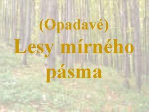 Opadav Lesy mrnho psma Klima zimn mrz prmrn