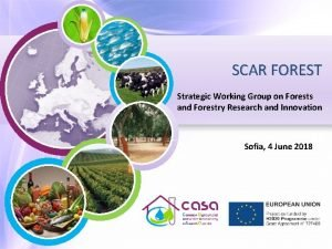SCAR FOREST Strategic Working Group on Forests and