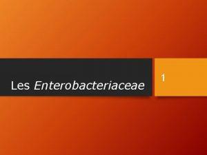 Les Enterobacteriaceae 1 Les Entriques 2 La famille