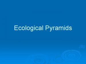 Ecological Pyramids Energy Loss in Ecosystems I Energy