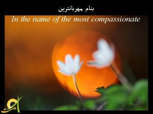 In the name of the most compassionate