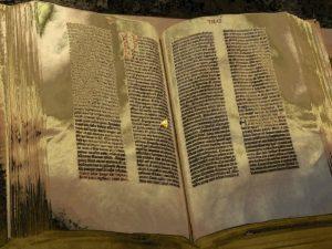 La Espaa del siglo XVI Trabajo Realizado por