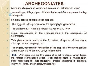ARCHEGONIATES Archegoniate probably originated from an ancestral green