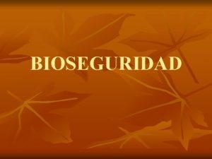 BIOSEGURIDAD DEFINICION n La bioseguridad es la aplicacin
