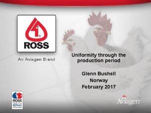 Uniformity through the production period Glenn Bushell Norway