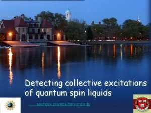 Detecting collective excitations of quantum spin liquids sachdev