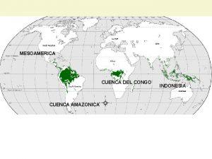 MESOAMERICA CUENCA DEL CONGO CUENCA AMAZONICA INDONESIA Lanzamiento