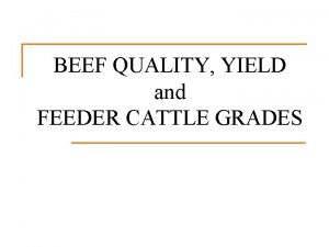 BEEF QUALITY YIELD and FEEDER CATTLE GRADES Grading