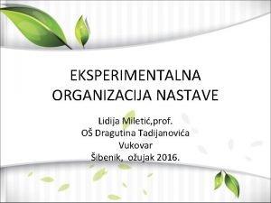 EKSPERIMENTALNA ORGANIZACIJA NASTAVE Lidija Mileti prof O Dragutina