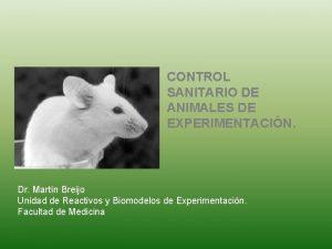 CONTROL SANITARIO DE ANIMALES DE EXPERIMENTACIN Dr Martn