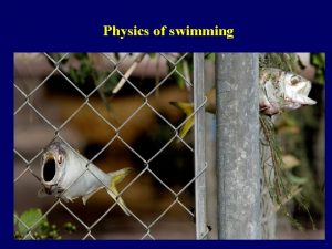 Physics of swimming Physics of swimming not all