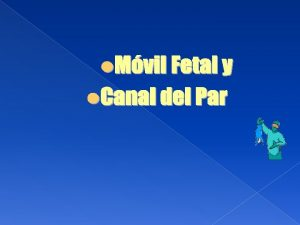 Mvil Fetal Cabeza Suturas Fontanelas Antropometra fetal Colocacin