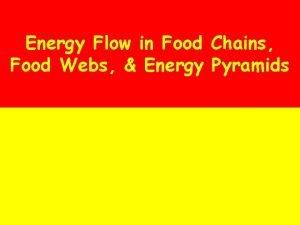 Energy Flow in Food Chains Food Webs Energy