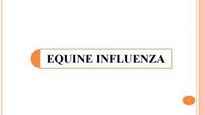 EQUINE INFLUENZA 1 EI is an acute contagious