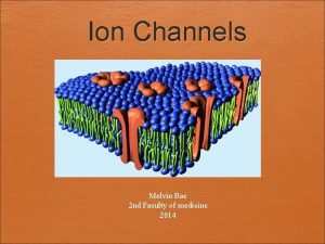 Ion Channels Melvin Bae 2 nd Faculty of