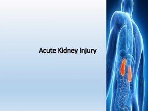 Acute Kidney Injury 1 Renal Blood Flow What