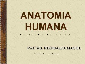 ANATOMIA HUMANA Prof MS REGINALDA MACIEL Anatomia humana