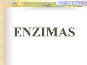 ENZIMAS ENZIMAS 1 Concepto de enzima 2 Concepto