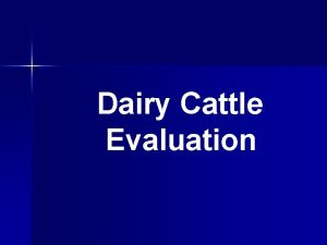 Dairy Cattle Evaluation Why Judge Dairy Cattle Gain