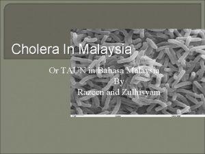 Cholera In Malaysia Or TAUN in Bahasa Malaysia