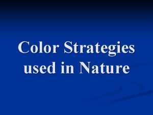 Color Strategies used in Nature Camouflage Concealing Camouflage