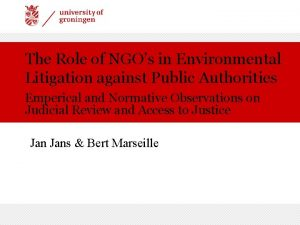 The Role of NGOs in Environmental Litigation against