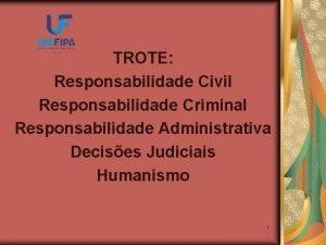 TROTE Responsabilidade Civil Responsabilidade Criminal Responsabilidade Administrativa Decises