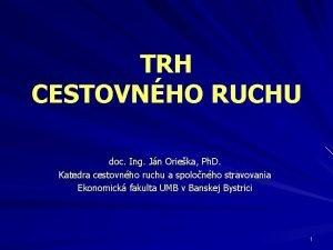 TRH CESTOVNHO RUCHU doc Ing Jn Orieka Ph