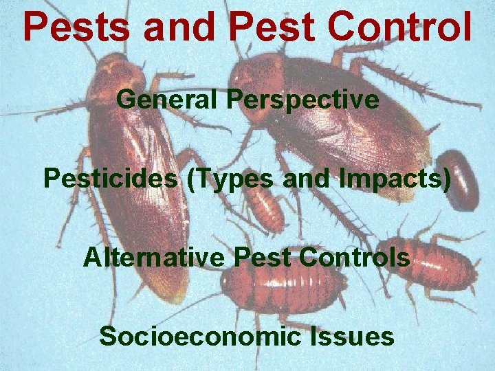 Pests and Pest Control General Perspective Pesticides Types