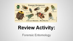 Review Activity Forensic Entomology Directions You can do