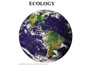 ECOLOGY What is ecology l Ecology is the