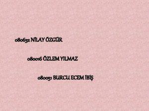 080632 NLAY ZGR 080016 ZLEM YILMAZ 080051 BURCU