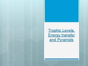 Trophic Levels Energy transfer and Pyramids Trophic Levels