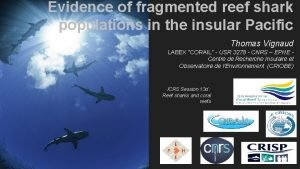 Evidence of fragmented reef shark populations in the