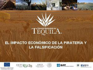 EL IMPACTO ECONMICO DE LA PIRATERA Y LA