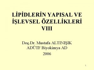 LPDLERN YAPISAL VE LEVSEL ZELLKLER VIII Do Dr
