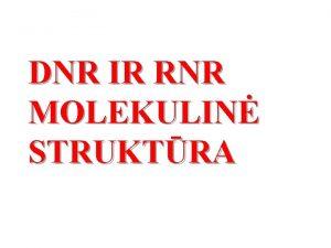 DNR IR RNR MOLEKULIN STRUKTRA VADAS n Genetikos