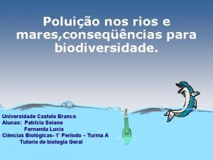 Poluio nos rios e mares conseqncias para biodiversidade
