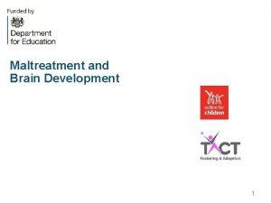 Maltreatment and Brain Development 1 Neurons l Babies