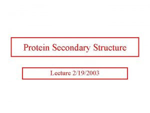 Protein Secondary Structure Lecture 2192003 Three Dimensional Protein