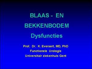 BLAAS EN BEKKENBODEM Dysfuncties Prof Dr K Everaert