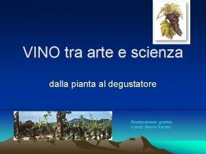 VINO tra arte e scienza dalla pianta al