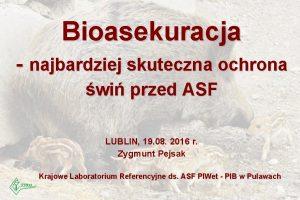 Bioasekuracja najbardziej skuteczna ochrona wi przed ASF LUBLIN