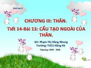 Sinh hc 6 CHNG III TH N Tit