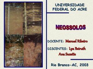 UNIVERSIDADE FEDERAL DO ACRE DOCENTE Manuel Ribeiro DISCENTES